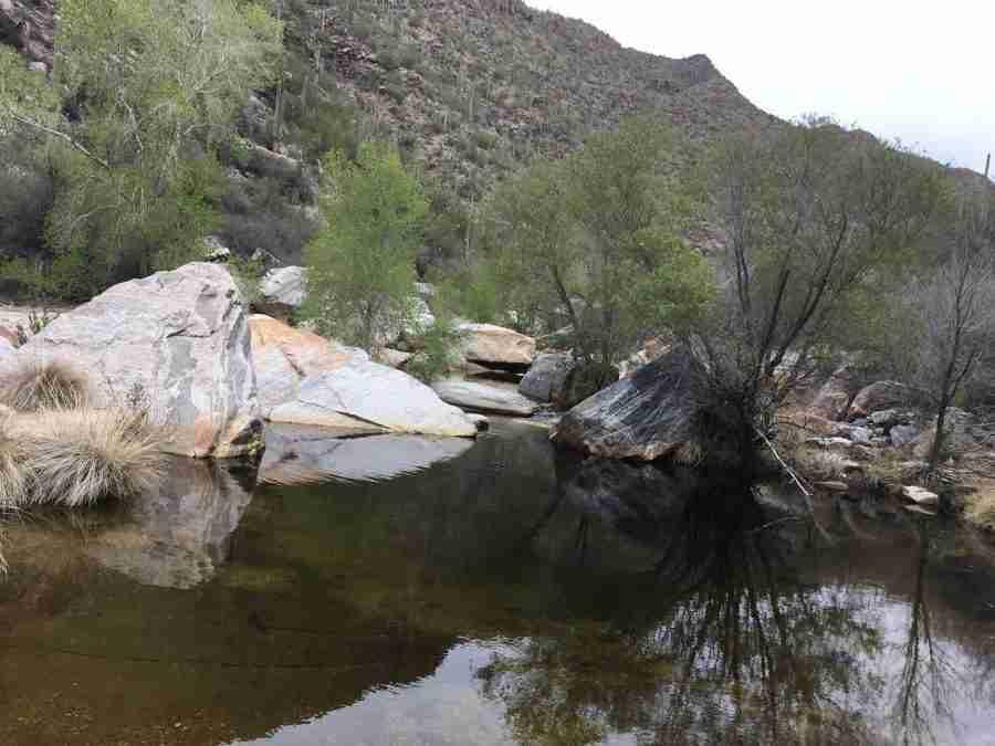 Day after BAC-Sabino Canyon and C2C 2018 at Catalina State Park