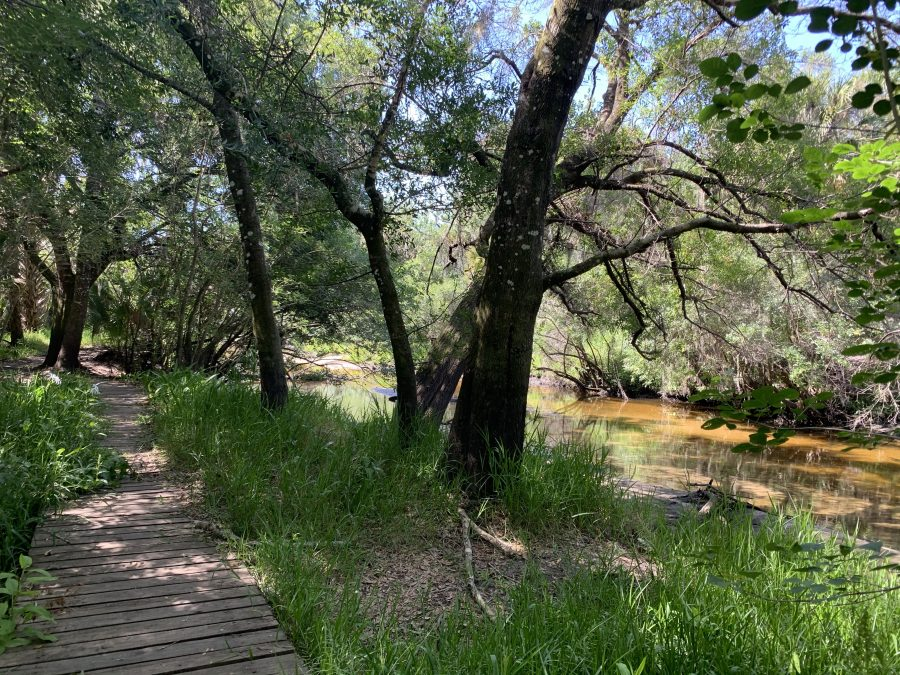 Florida Trail at Little Manatee River State Park