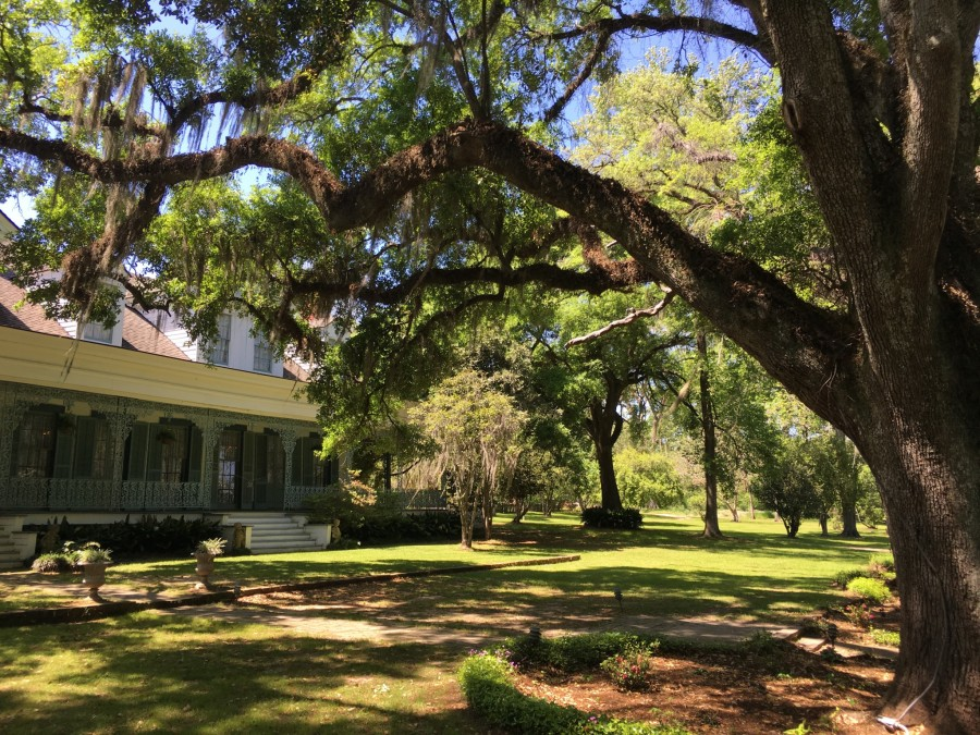 Day 38: St. Francisville, Louisiana – REST DAY