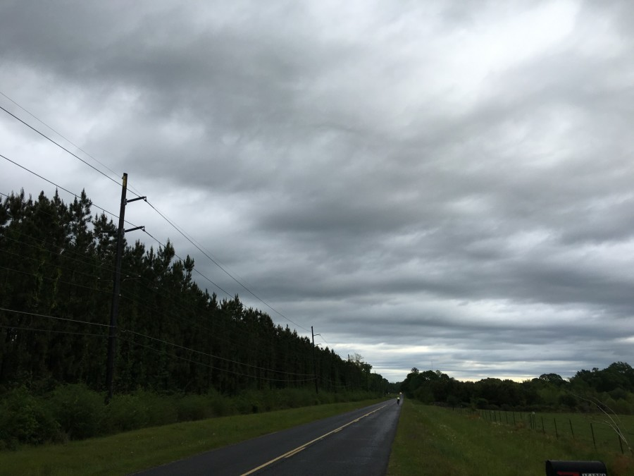 Day 39: St. Francisville to Franklinton, Louisiana – 86 miles