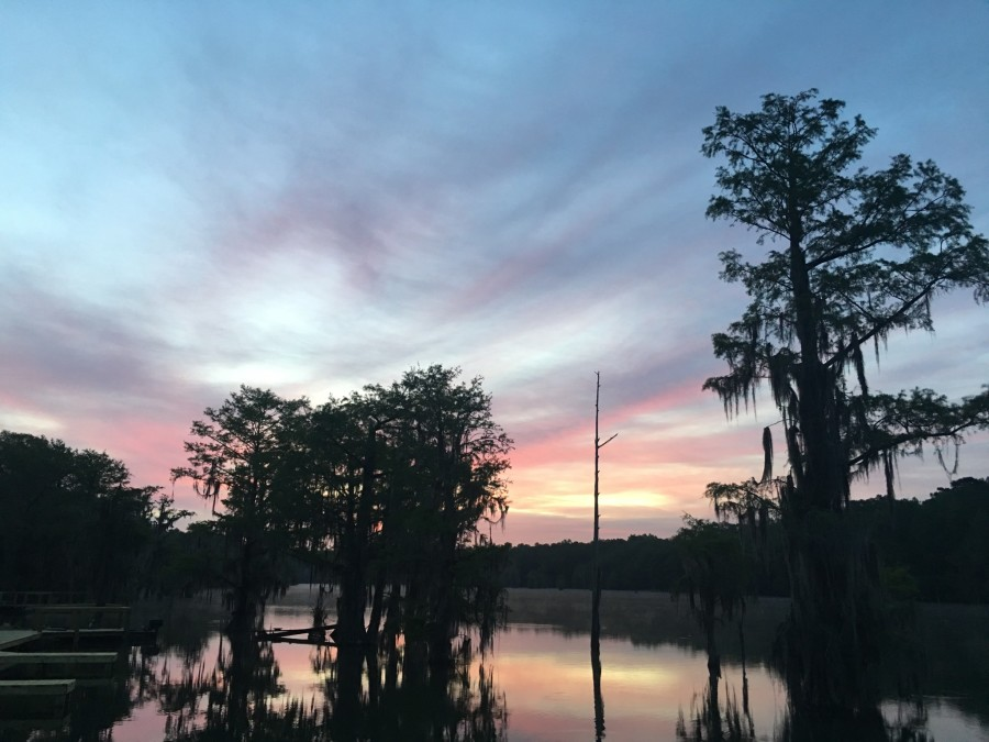 Day 47: Marianna to Tallahassee, Florida – 75 miles