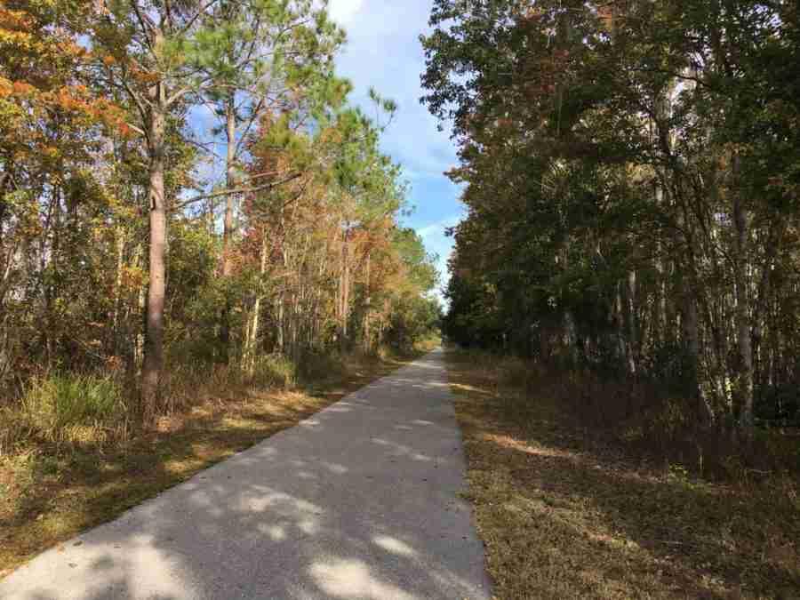 Post Turkey ride: Van Fleet State Trail