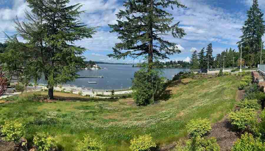 Day 0-Loop ride of Bellevue, Lake Washington, U of W Arboretum, East Seattle-23.7 miles with 1376 feet of elevation.