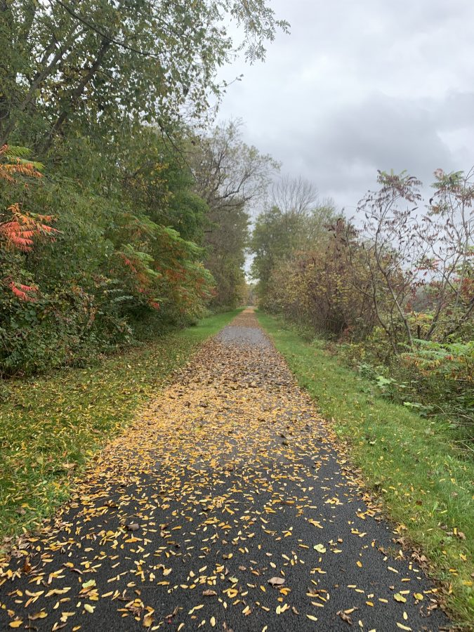 Cooperstown, NY-Empire State Trail and Erie Canalway Trail-27 miles and 291 feet of elevation!